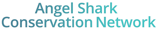 Angel Shark Conservation Network
